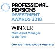 Multi asset of the year winner